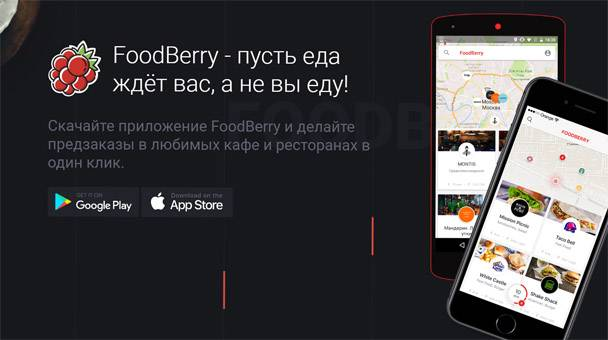 FoodBerry